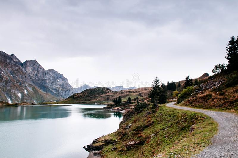Trubsee lake Hiking trail with pine tree and Swiss Alps of Engelberg royalty free stock photography