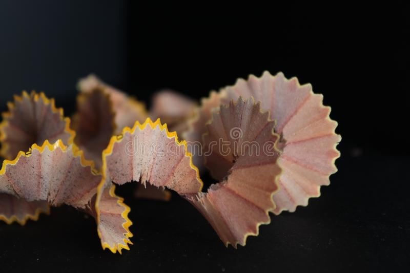 Trucioli di legno della matita su creatività trattata creativa di Art Background Concept Suitable For del mestiere dell'estratto  fotografie stock