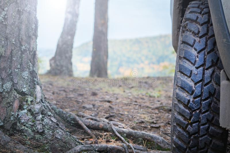 Truck car wheel on offroad forest adventure trail royalty free stock photo