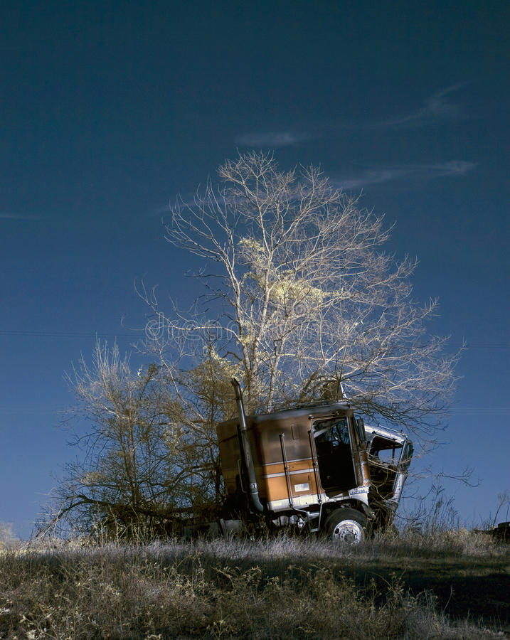 Truck and tree royalty free stock photo