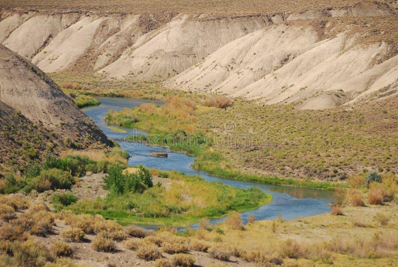 truckee реки стоковая фотография rf