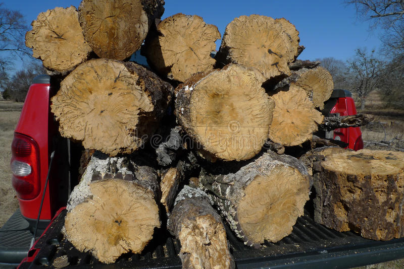 Truckload of firewood ready to split. Red pickup truck bed with logs of wood ready to split for firewood, rough bark, medium sized tree trunks. Many people are royalty free stock photo