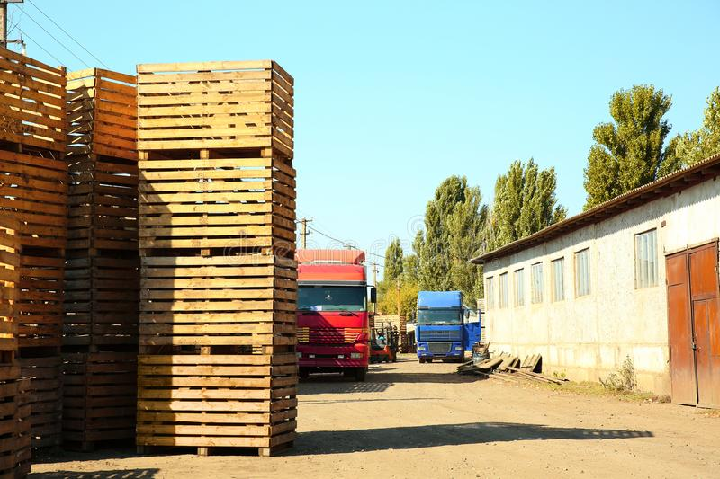 Trucks beside empty wooden crates. Trucks bee empty wooden crates for harvesting stock image