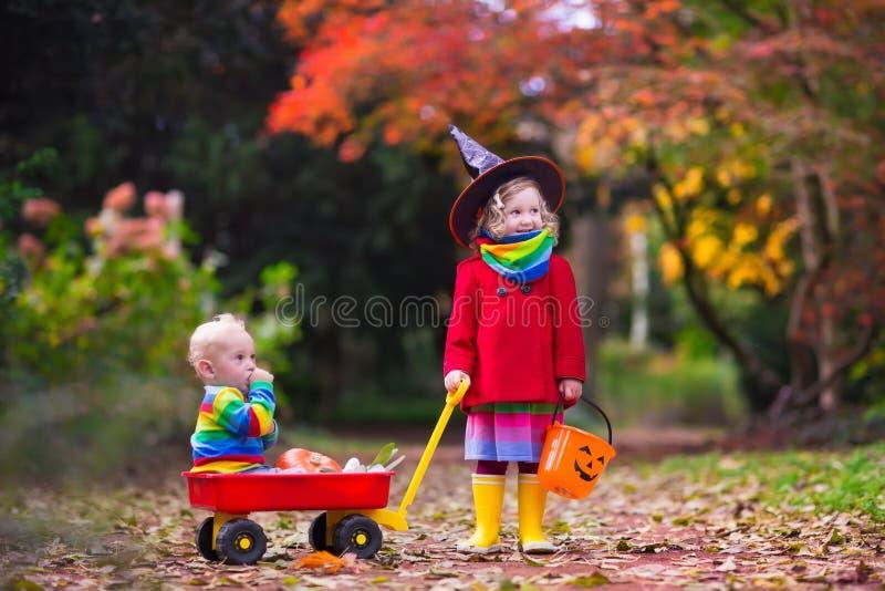 Truco o invitación de los niños en Halloween imagen de archivo libre de regalías