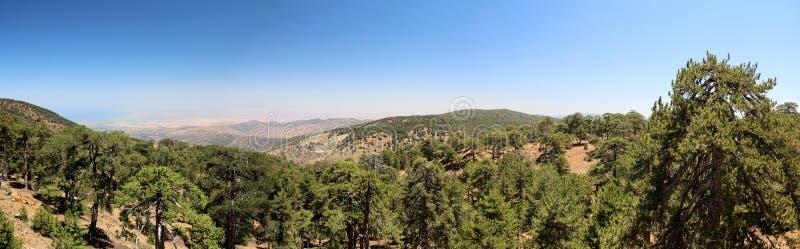 Trudos-Berge nahe paphos Zypern stockbilder