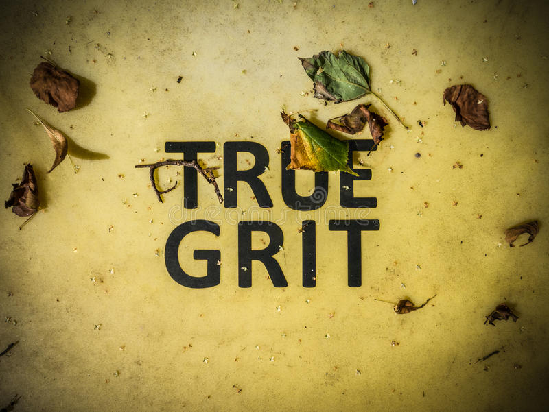 True Grit Sign. Conceptual Image Of True Grit Written On A Grit Bin royalty free stock images