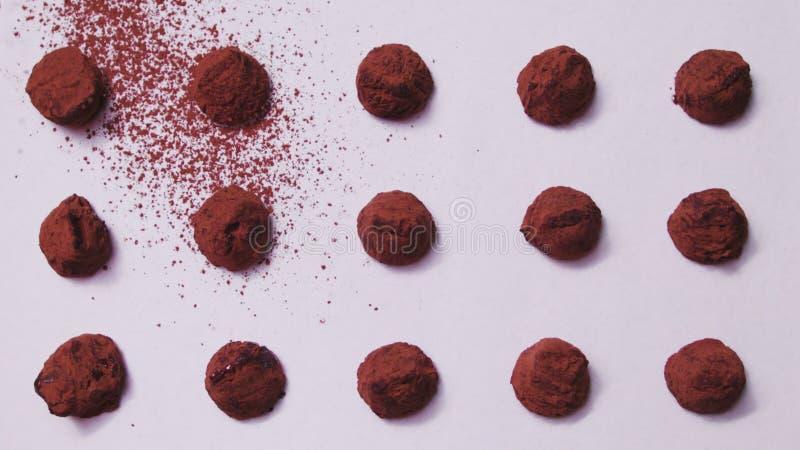 Trufas asperjadas con cacao foto de archivo