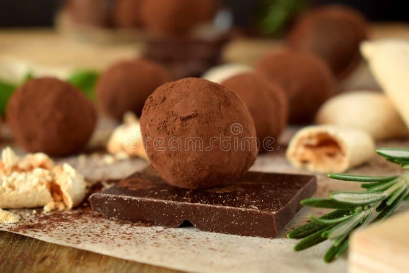 Trufas de chocolate asperjadas con el polvo de cacao fotografía de archivo