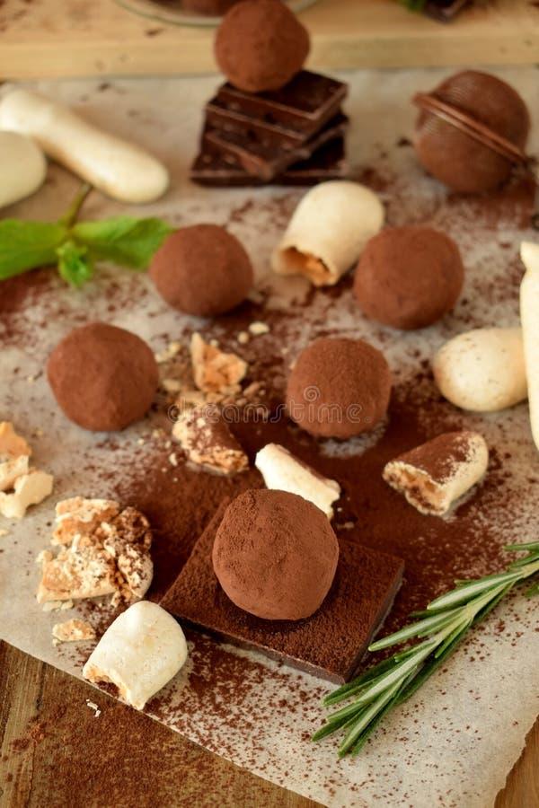 Trufas de chocolate asperjadas con el polvo de cacao foto de archivo libre de regalías