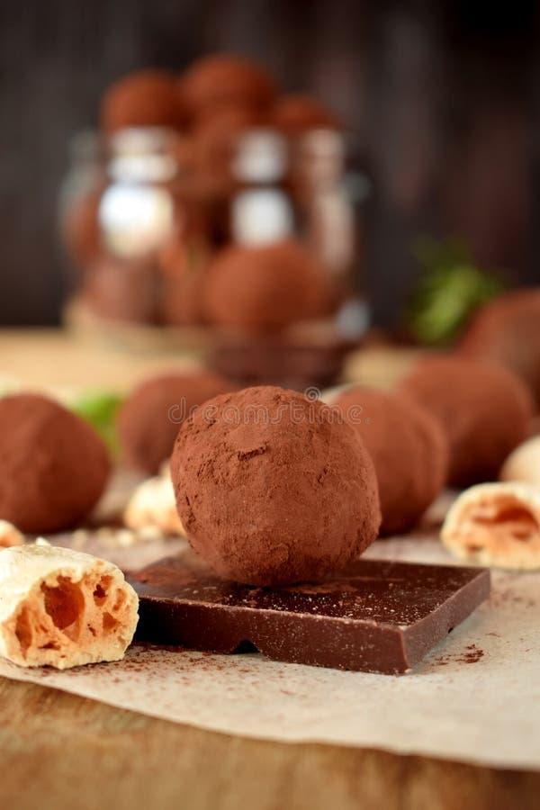 Trufas de chocolate asperjadas con el polvo de cacao imágenes de archivo libres de regalías