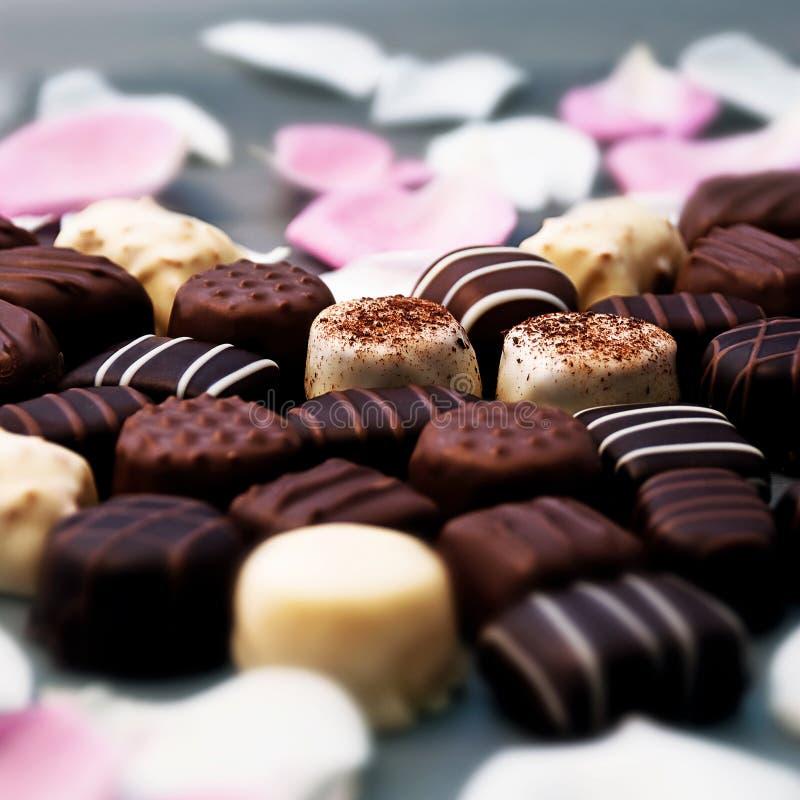 Trufas de chocolate e pétalas cor-de-rosa imagens de stock