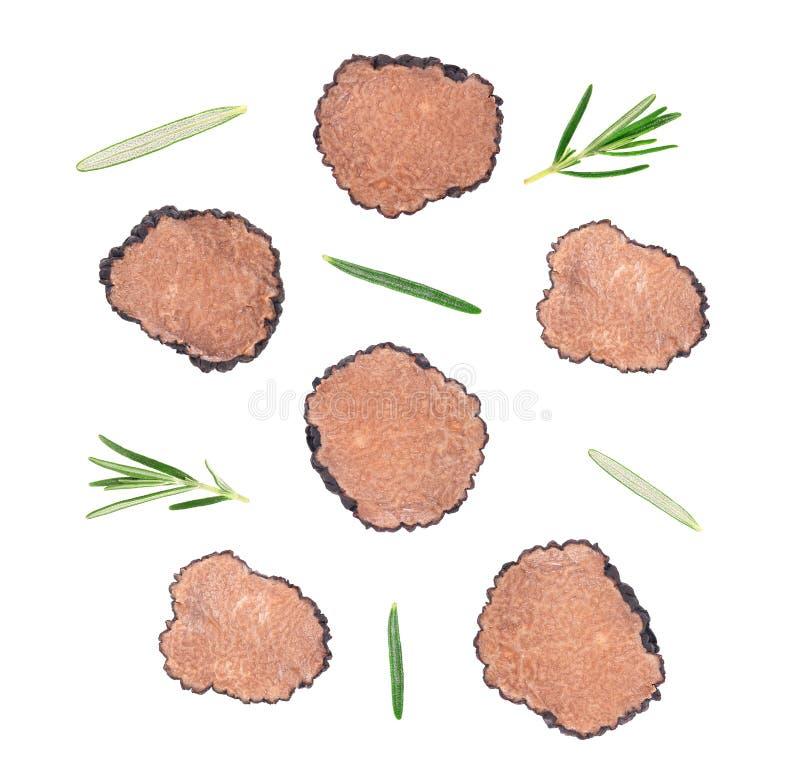 Trufas pretas isoladas sobre fundo branco Trufa fatiada fresca com ramificação de rosmaninho Trufa exclusiva Delicacy imagem de stock