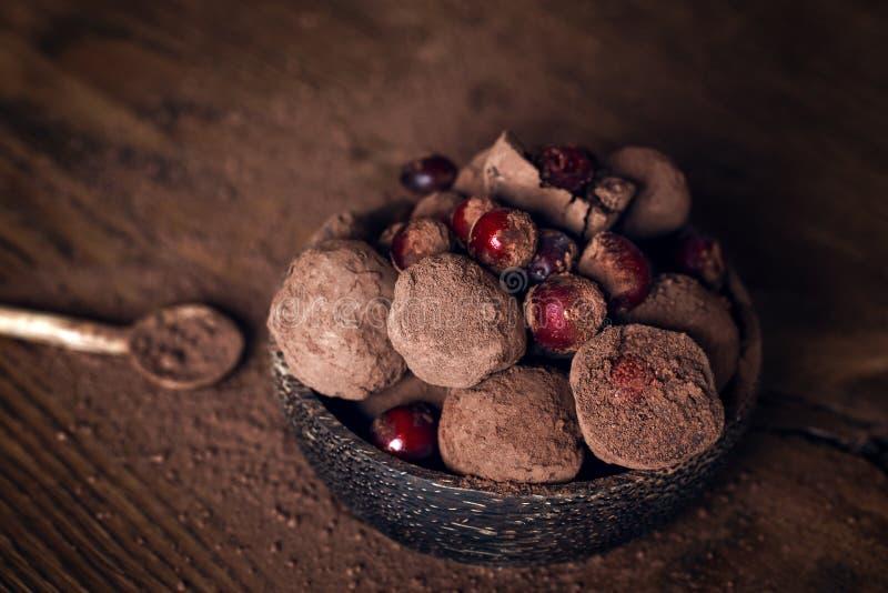 Truffe de chocolat avec des canneberges photographie stock