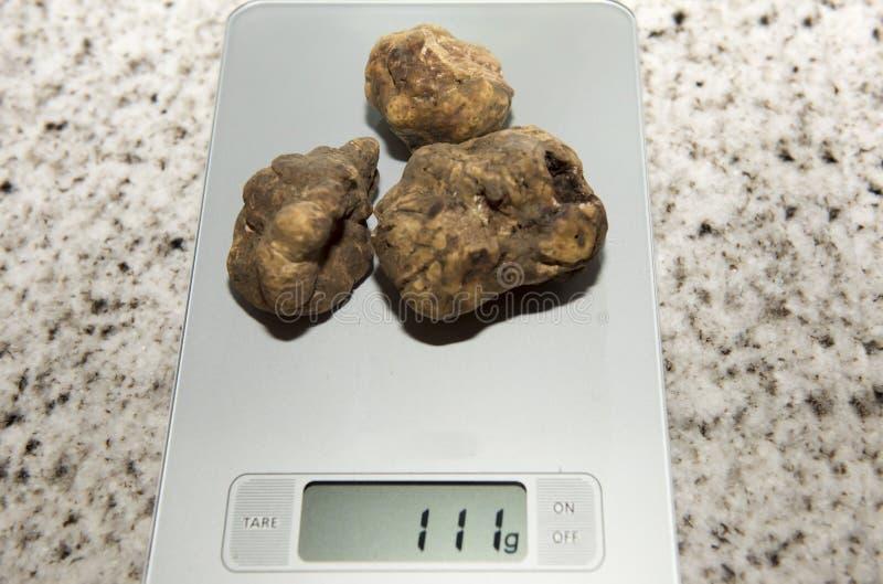 truffels stock foto's