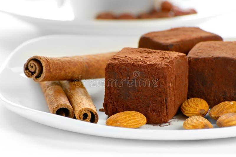 Truffes de chocolat d'une plaque photos stock