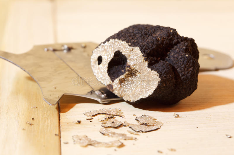Truffle. Black truffle and truffle grater. highly prized delicacy stock image