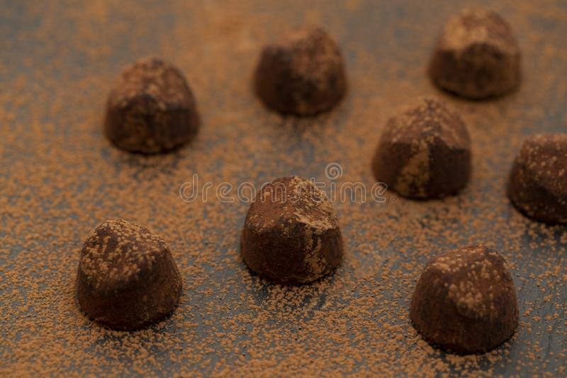 Truffle chocolate candies on cocoa powder. Gourmet food, delicious dessert. royalty free stock images