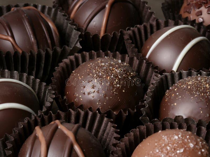 Truffles. Assorted chocolate truffles royalty free stock photography
