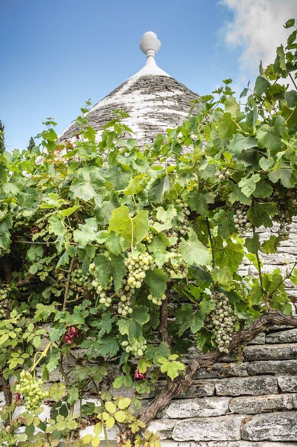 Trullo-Haus mit Weinstöcken lizenzfreie stockfotografie