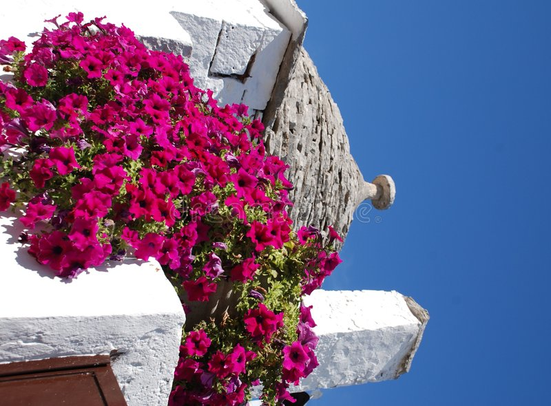 Trullo Roof with Pink Flowers 3. The roof of a trullo in Alberobello (Puglia, southern Italy), with pink flowers in the foreground. The trulli, which are stock photo