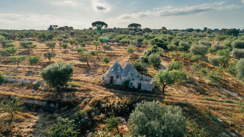 Trullo trulli old whitr House in the field in Italy stock photography