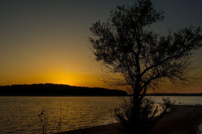 Truman Lake Sunset con el árbol Siloutte imagenes de archivo