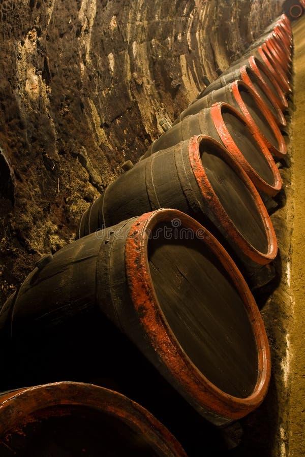 trummakällare recedes radwinevinodlingen royaltyfri bild