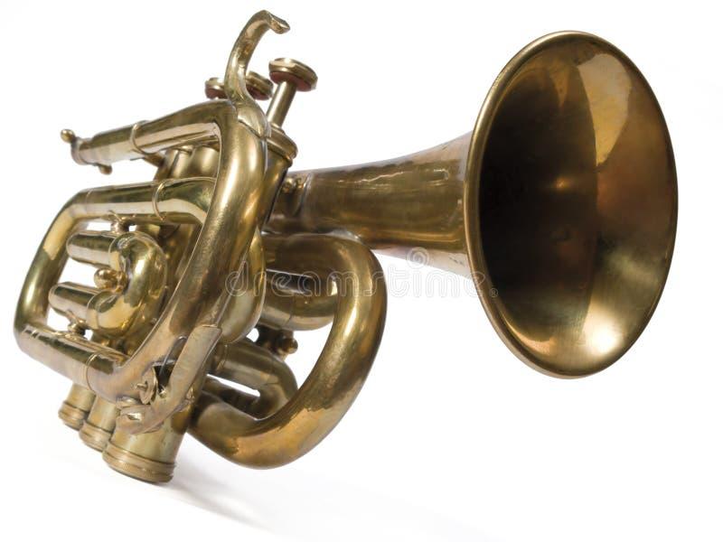 trumpet стоковые фотографии rf