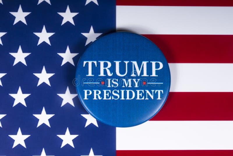 Trumpf ist mein Präsident lizenzfreie stockbilder
