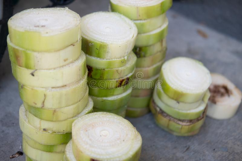 The trunk of a banana is cut into floating pieces for make Krathong on Loy Krathong day. The trunk of a banana is cut into floating pieces. Used for make royalty free stock images