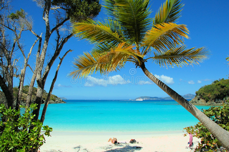 Trunk Beach 2. Tropical beach scene stock images