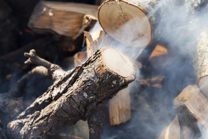 Burning wood. Trunk and large branches of a tree from which made a fire, smoke of gray color from badly burning wood stock photography
