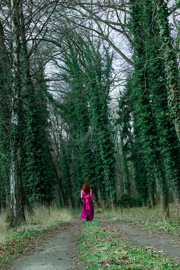 A girl among the trunks of pine trees, covered with curly green ivy in the forest. Fairy-tale forest in summer and autumn. royalty free stock photo