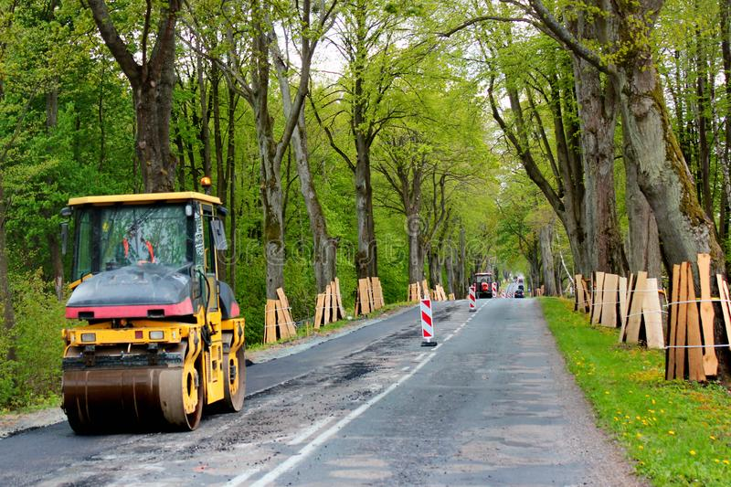 Trunks of roadside trees protected by wooden planks during a road construction.  stock image