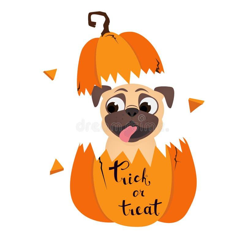 Truque ou tratamento Pug engraçado em abóbora Ilustração do vetor Humor Halloween com cão ilustração do vetor