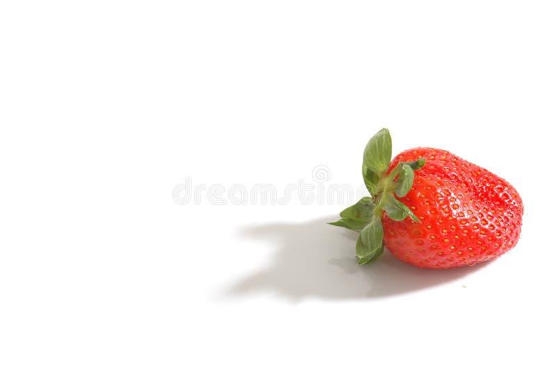 truskawka zdjęcie stock