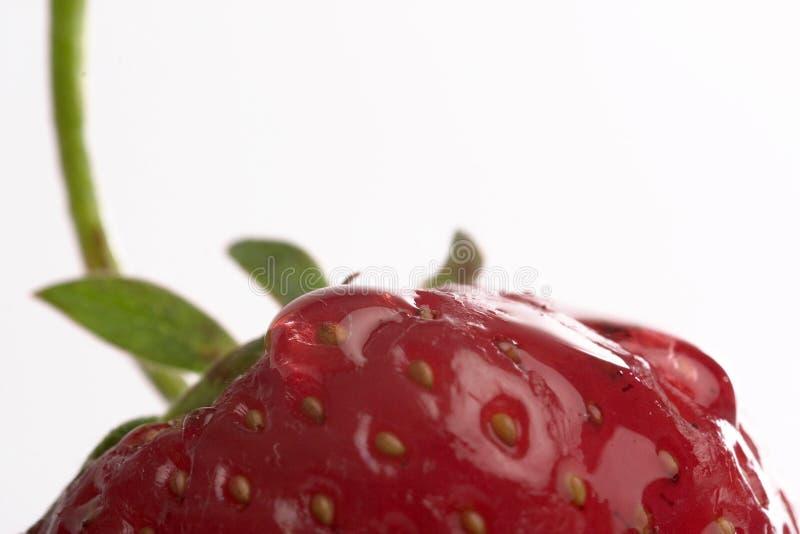 truskawka się blisko zdjęcie stock