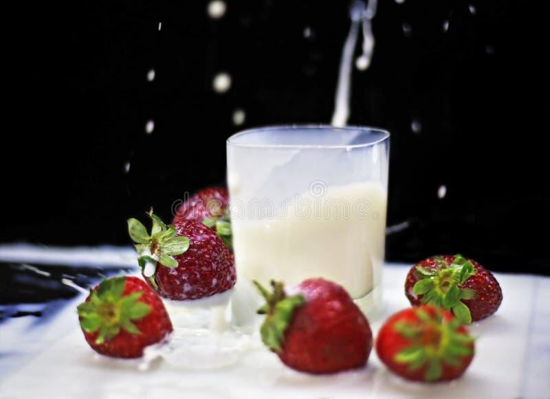 Truskawka spada w mleko - czerwone truskawki na czarnym tle obraz royalty free