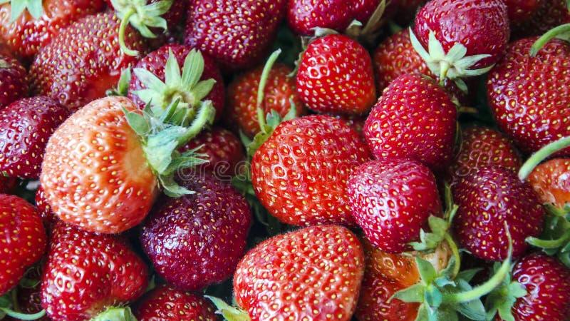 truskawka ?wie?e organicznie jagody makro- owocowy t?o pokrojone ananas w p?? obrazy stock