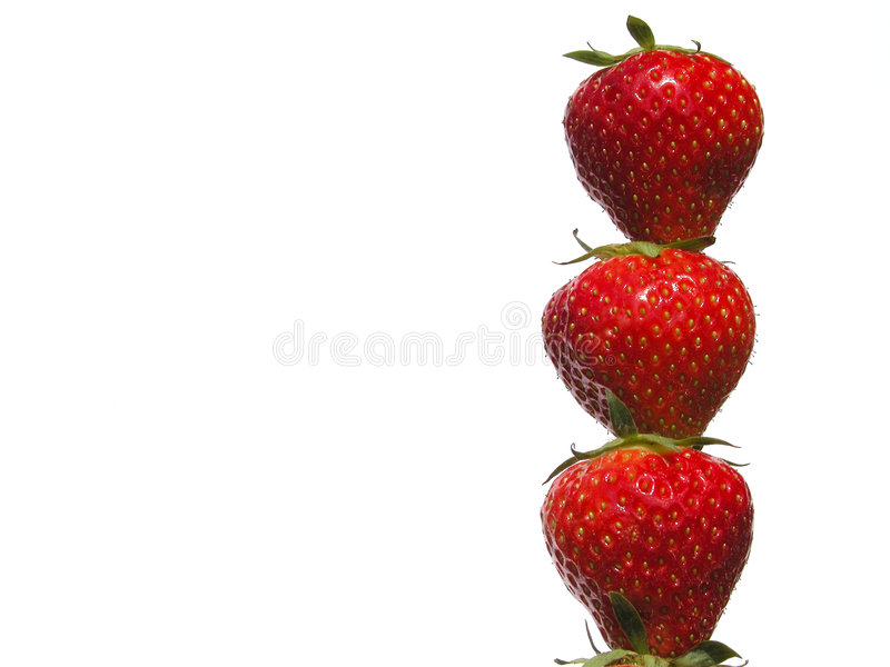 truskawki. zdjęcie stock
