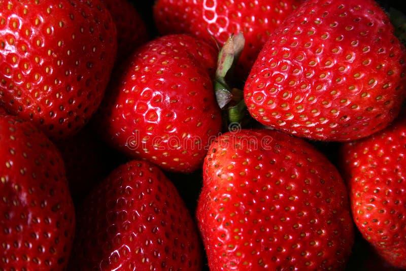 truskawki. obraz stock