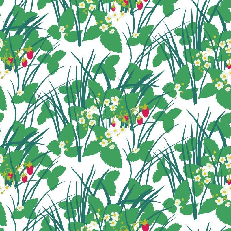 Truskawki pole w lasowym bezszwowym wzorze ilustracji