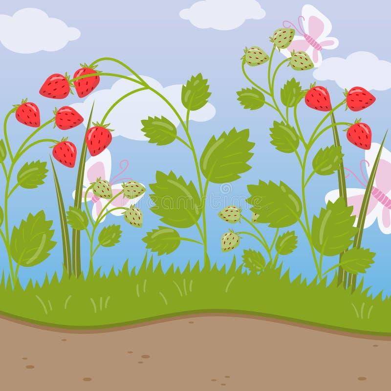 Truskawki pole, zielony tło z dojrzałymi jagodami wektorowa ilustracja, kreskówka styl ilustracji