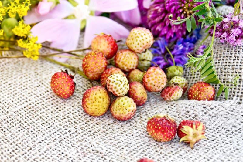 Truskawki z kwiatami na starym burlap zdjęcie stock
