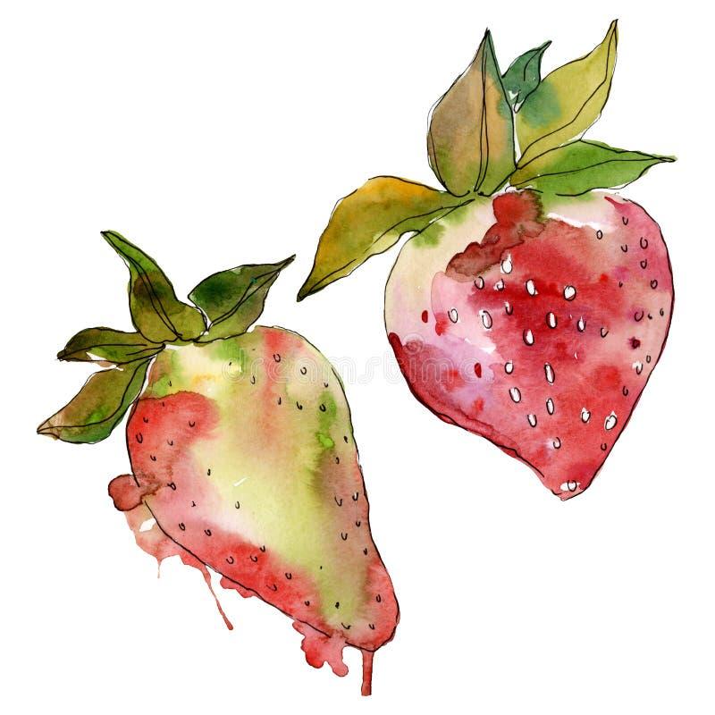 Truskawkowa zdrowa karmowa świeża jagoda Akwareli t?a ilustracji set Odosobniony jagody ilustracji element zdjęcie stock