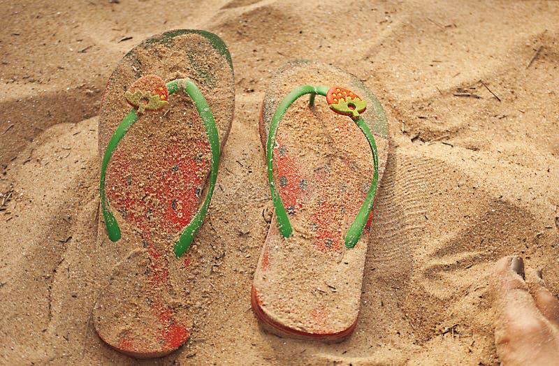 truskawkowi plażowi kapcie obrazy royalty free