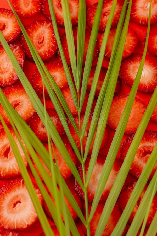 Truskawkowy plasterek na czerwonym tle Pokrojone truskawki zdjęcie stock