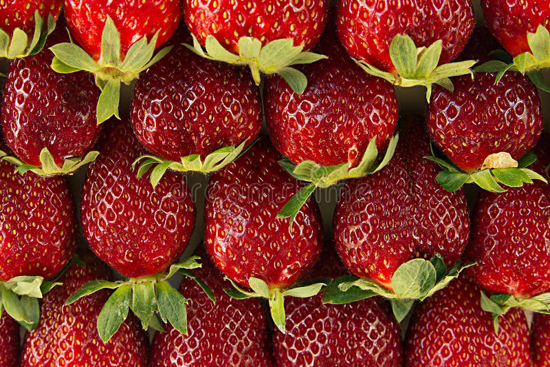 Truskawkowy tło całe truskawki Kolorowe dojrzałe truskawki owocowy tło pokrojone ananas w pół bezszwowa truskawka Wiosna, lata ba fotografia royalty free