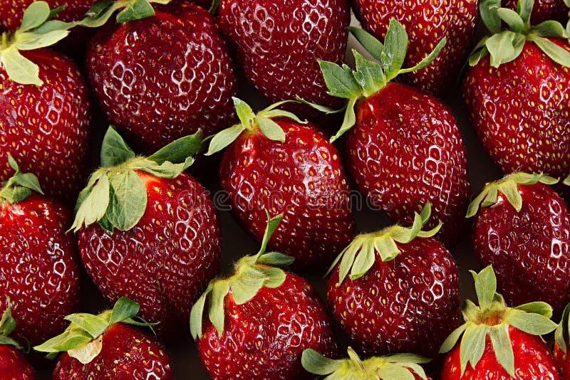 Truskawkowy tło całe truskawki Kolorowe dojrzałe truskawki owocowy tło pokrojone ananas w pół bezszwowa truskawka Wiosna, lata ba obraz royalty free
