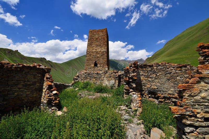 Truso-Schlucht nahe der Kazbegi-Stadt lizenzfreie stockfotografie